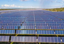 EDP completes 1.34-MWp PV plant for Brazilian Brametal