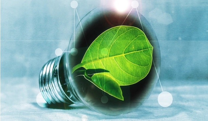 Bioelectricity proves critical to the EU's decarbonisation