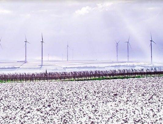 New Study by Leading Renewables Consultant ArcVera Shows Texas Icing Event Led to Over $4 Billion Financial Loss for Wind Farms