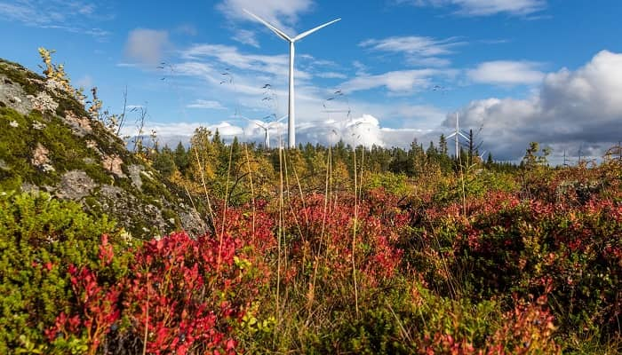 Siemens Gamesa notches third Swedish contract with fast growing global renewable energy developer BayWa r.e.