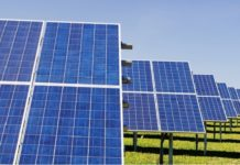 Canadian Solar Awarded 393.7 MWp Solar Power Projects in Brazil
