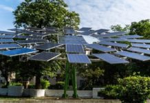 CSIR-CMERI developed worlds largest solar tree
