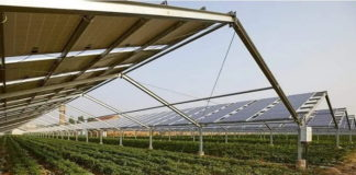 Fintel Energija, MK Group to install Europe's largest solar power plant under Agrosolar Kula project