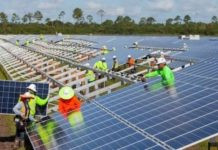 NextEra upbeat on solar grid parity, standalone storage prospects