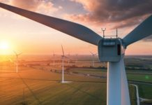 Vattenfall opens Danish offshore wind farm Horns Rev 3