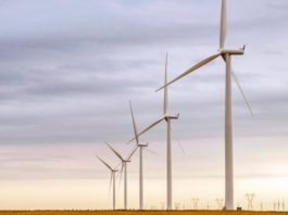 Enel to expand 450-MW US wind park after PPA with Danone